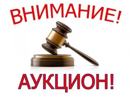 Завтра состоится аукцион на право размещения нестационарных торговых объектов