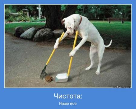 Феодосийские власти объявили двухмесячник чистоты