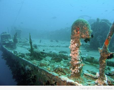 Более 100 подводных археологических объектов были обнаружены экспедицией Института востоковедения РАН в акваториях Севастополя и Крыма